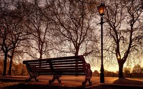 Обои светильник, город, скамья
