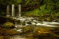 Картинка Греция, водопад, деревья, мох, скала, лес, ручей
