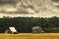 Картинка ферма, дом, дождливый, поле, деревья, сарай, облака
