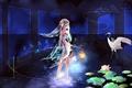 Картинка вода, девушка, цветы, птица, аниме, арт, фонарь