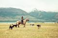 Картинка озеро, женщина, лошадь, горы, собаки