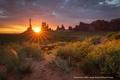 Картинка солнце, лучи, свет, скалы, пустыня, США, кусты