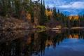 Картинка осень, деревья, природа, отражение, река