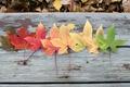 Картинка осень, листья, природа, фон