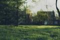 Картинка боке, дома, деревья, трава, поле