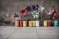 Картинка colours, street, Urban Flowers