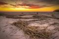 Картинка закат, пейзаж, пляж