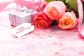 Картинка розы, любовь, цветы