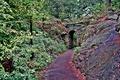 Картинка осень, деревья, мост, листва, Нью-Йорк, дорожка, арка