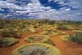 Картинка кольца, Австралия, трава пустыня