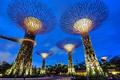 Картинка небо, мост, огни, парк, люди, вечер, Сингапур