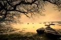 Картинка туман, озеро, лодки, утро