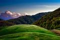 Картинка пейзаж, дорожка, трава, деревья, природа, зелено