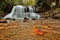 Картинка осень, вода, водопад, поток, water, autumn, leaves