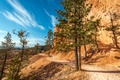 Картинка небо, солнце, деревья, скалы, тропинка, Utah, Bryce Canyon National Park