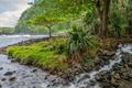 Картинка деревья, горы, река, ручей, камни, поток