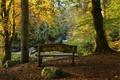 Картинка Autumn, Scotland, Hermitage