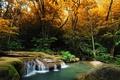 Картинка осень, лес, деревья, ручей, камни, водопад, мох