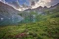 Картинка цветы, горы, природа, озеро, отражение