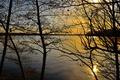 Картинка отражение, озеро, закат, деревья, облака, небо