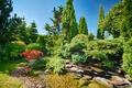 Картинка вода, деревья, цветы, парк, камни, солнечно, кусты