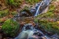 Картинка осень, лес, листья, ручей, камни, скалы, поток