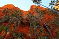 Картинка небо, пальмы, обрыв, скалы