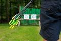 Картинка arrows, archery, target