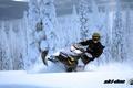 Картинка лес, снег, спорт, sport, snow, снегоход, 600