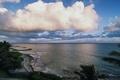 Картинка море, волны, небо, облака, пейзаж, пальмы, берег