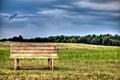 Картинка поле, небо, трава, облака, деревья, скамейка