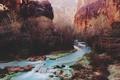 Картинка river, trees, canyon, sunlight, cliffs