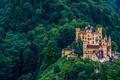 Картинка лес, замок, Германия, Бавария, Хоэншвангау