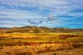Картинка облака, небо, холмы, стадо, забор, фермы, овцы