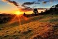 Картинка облака, трава, деревья, холм, солнце
