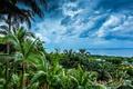 Картинка небо, облака, пейзаж, пальмы, Japan, Okinawa