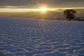 Картинка закат, облака, небо, солнце, дерево, зима, горы