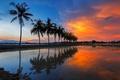 Картинка небо, вода, облака, пальмы, дома, зарево