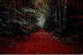 Картинка осень, лес, листья, деревья, дорожка