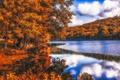Картинка осень, лес, листья, деревья, отражение, река, рябь