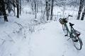 Картинка Велосипед, прогулка, зимний лес