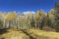 Картинка осень, небо, трава, деревья, горы