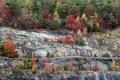 Картинка осень, деревья, скалы, склон
