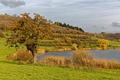 Картинка осень, трава, деревья, река, берег, Германия, кусты