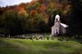 Картинка поле, осень, лес, трава, деревья, могилы, листва