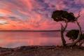 Картинка пейзаж, закат, Port Lincoln National Park