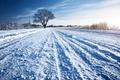 Картинка зима, дорога, трава, снег, дерево, солнечно