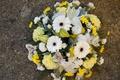 Картинка альстрёмерия, гвоздики, герберы, букет, фото, цветы