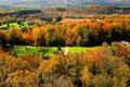 Картинка осень, лес, трава, деревья, природа, дом, Канада