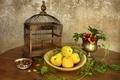Картинка листья, посуда, яблоки, натюрморт, орехи